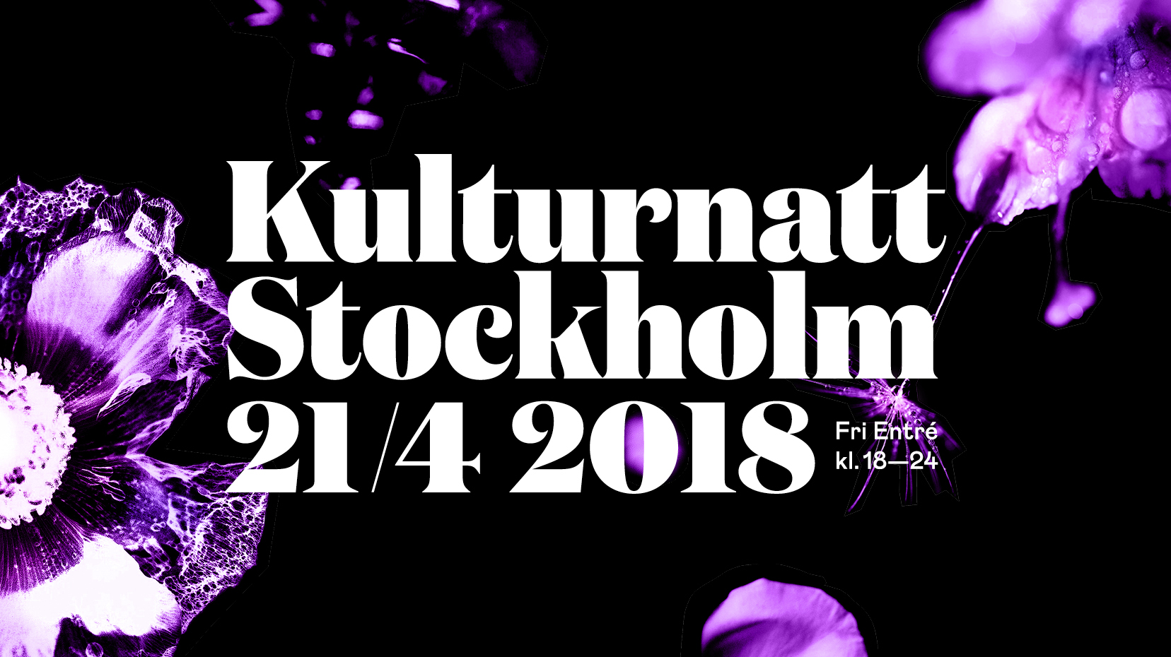 kulturnatten på LOD - Erik Tidäng